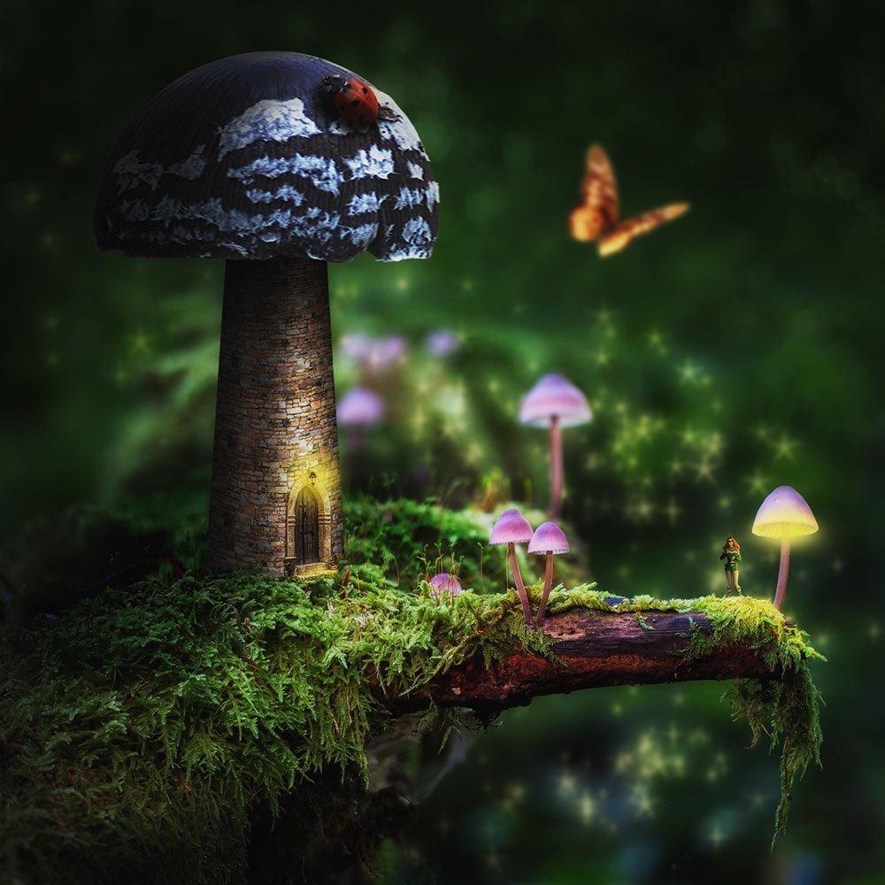 digital_fungi-castle