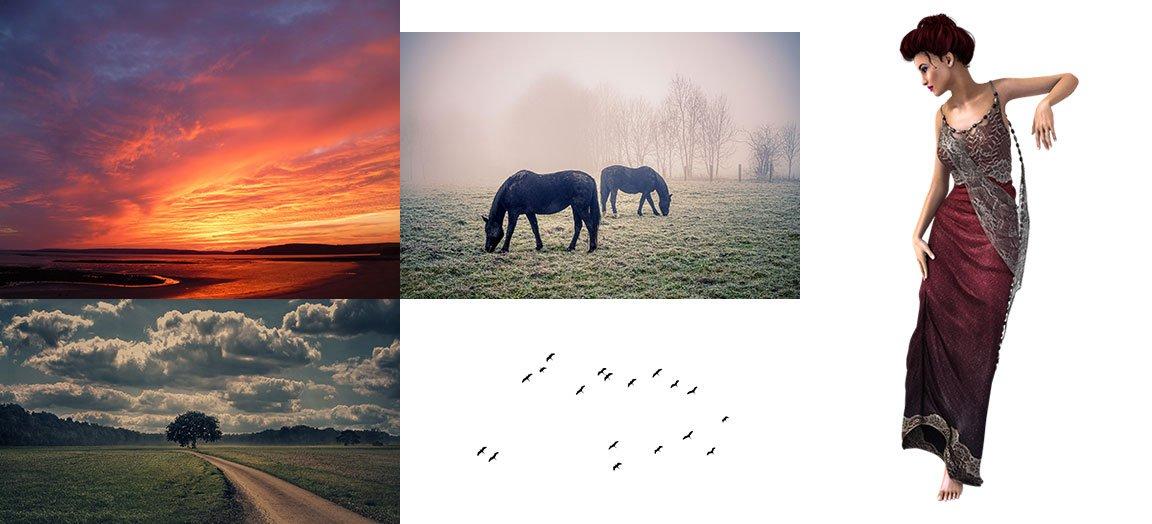 assets_sunset