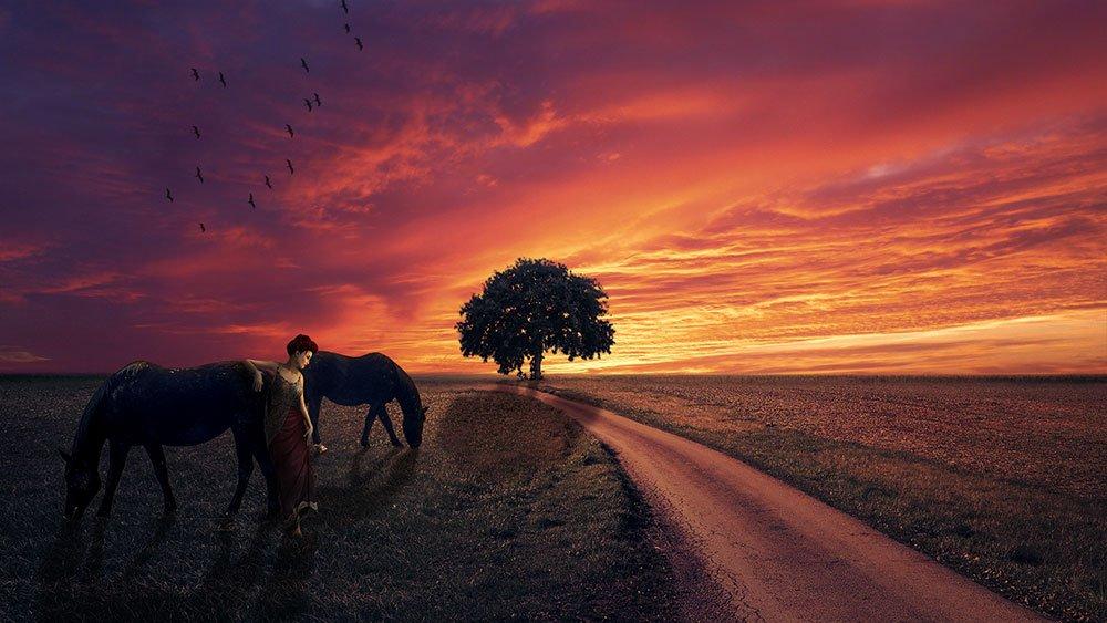 digital_sunset